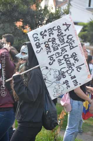 GALERÍA | Postales de la marcha estudiantil 17