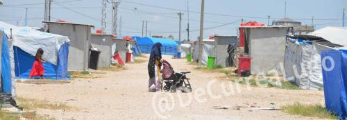 GALERÍA | Kurdistán: entre tribuna y trinchera 21