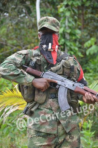 GALERÍA | Ejército de Liberación Nacional. 22