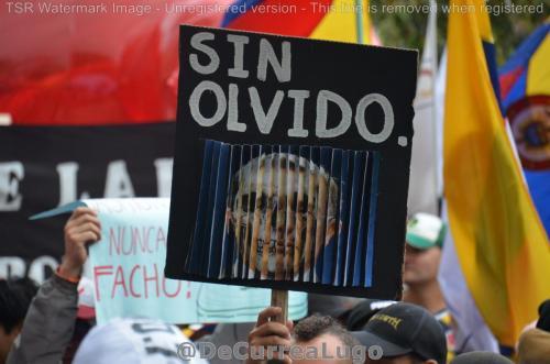 GALERÍA | 21N: Fiesta por la justicia social y la paz 12