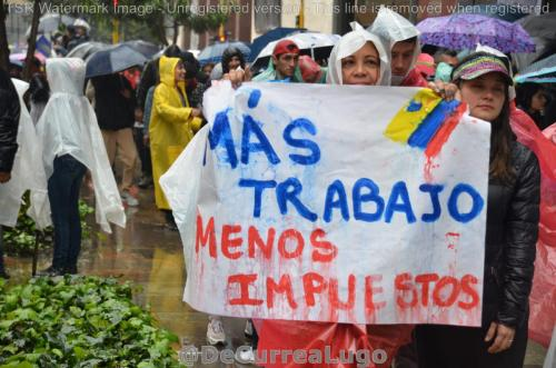 GALERÍA | 21N: Fiesta por la justicia social y la paz 10