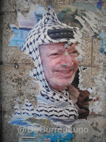 palestina8